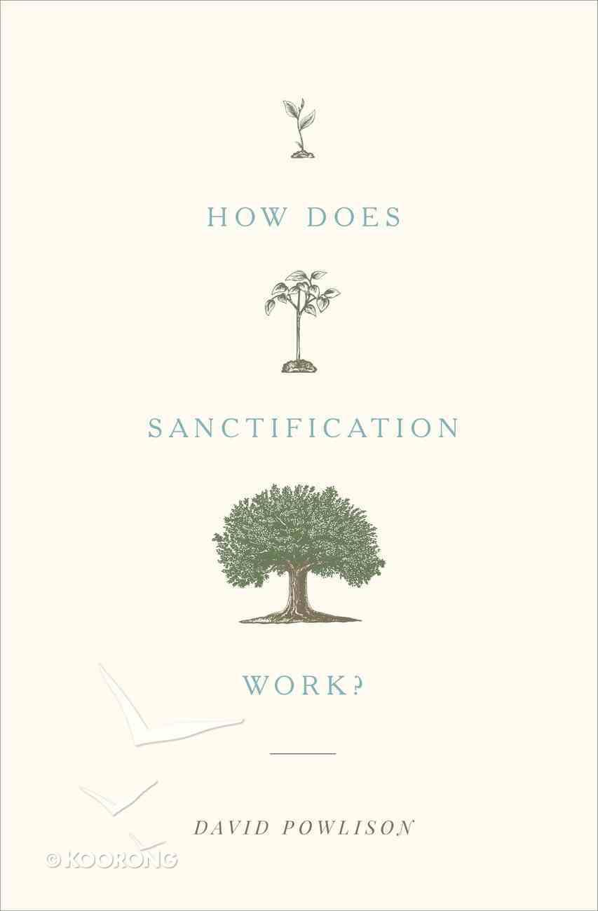 How Does Sanctification Work? eBook