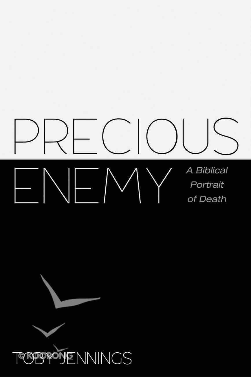Precious Enemy eBook
