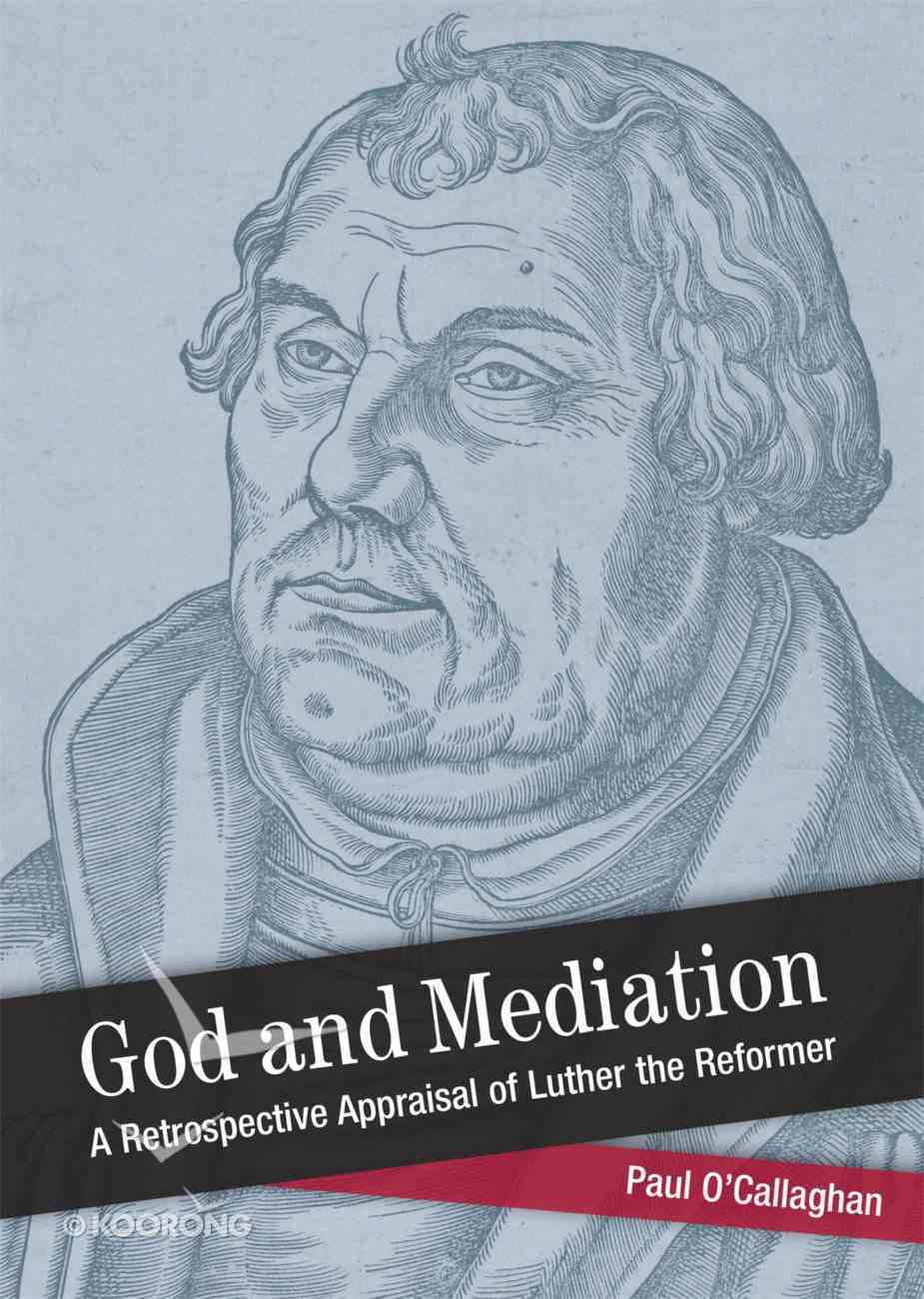 God and Mediation (Shapers Of Modern Theology Series) eBook