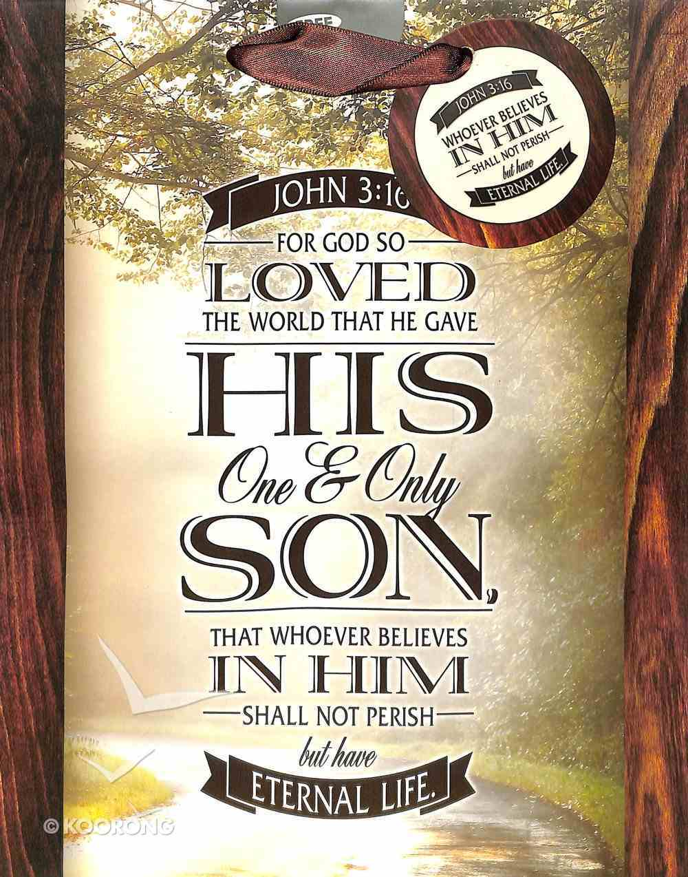 Gift Bag Medium: John 3:16 Stationery