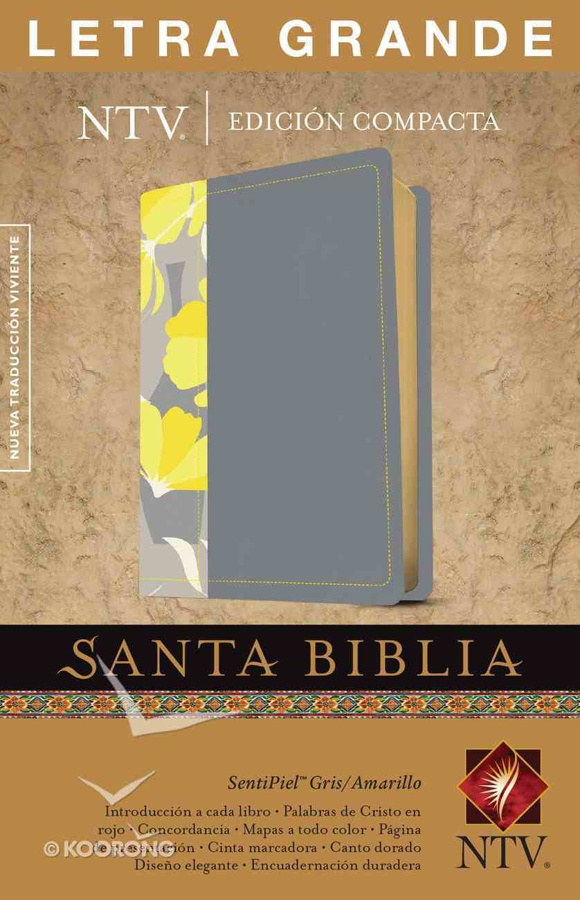 Ntv Santa Biblia Edicion Compacta Letra Grande Gray/ Yellow (Red Letter Edition) Imitation Leather