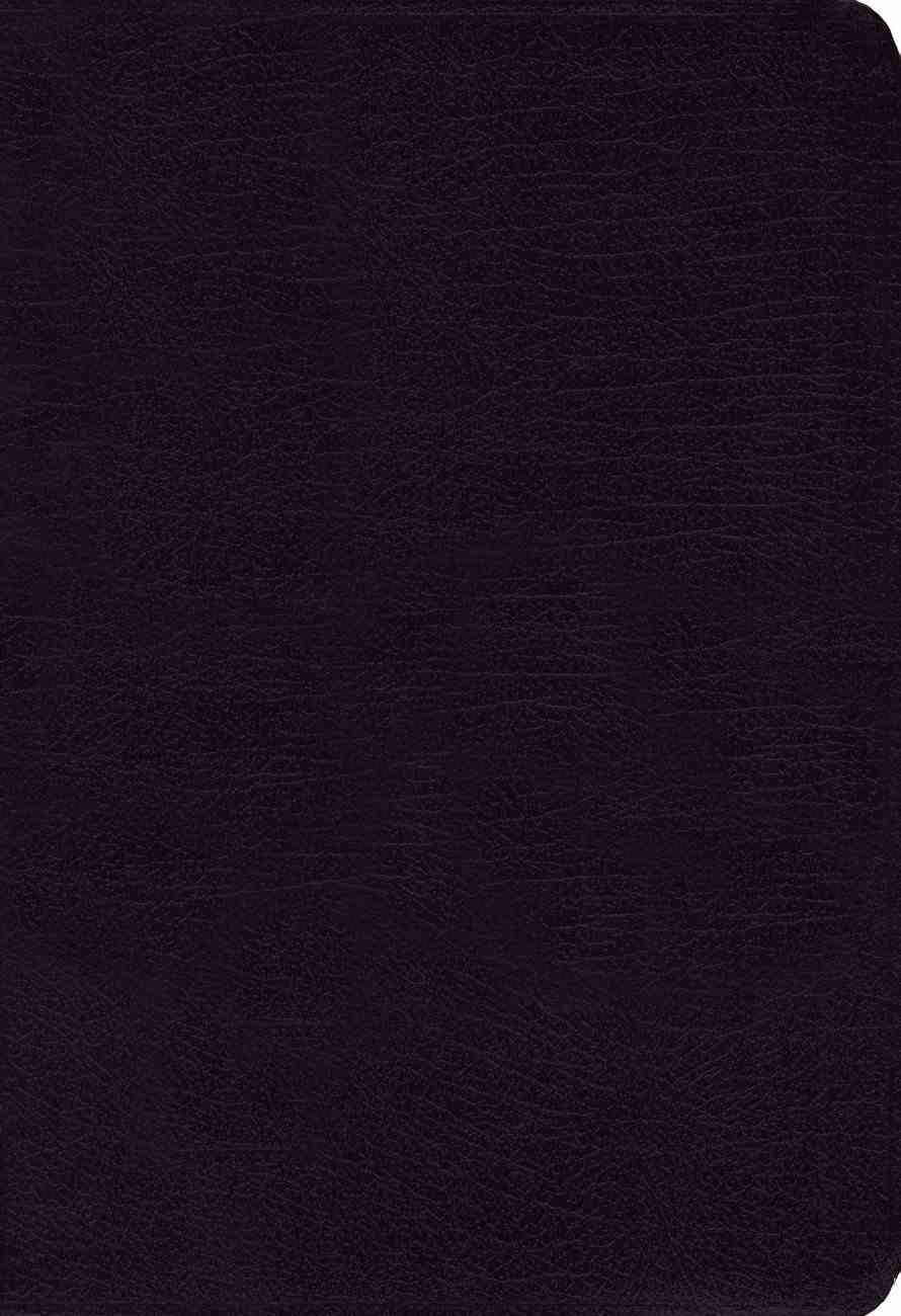 NIV Study Bible Regular Black (Red Letter Edition) Bonded Leather