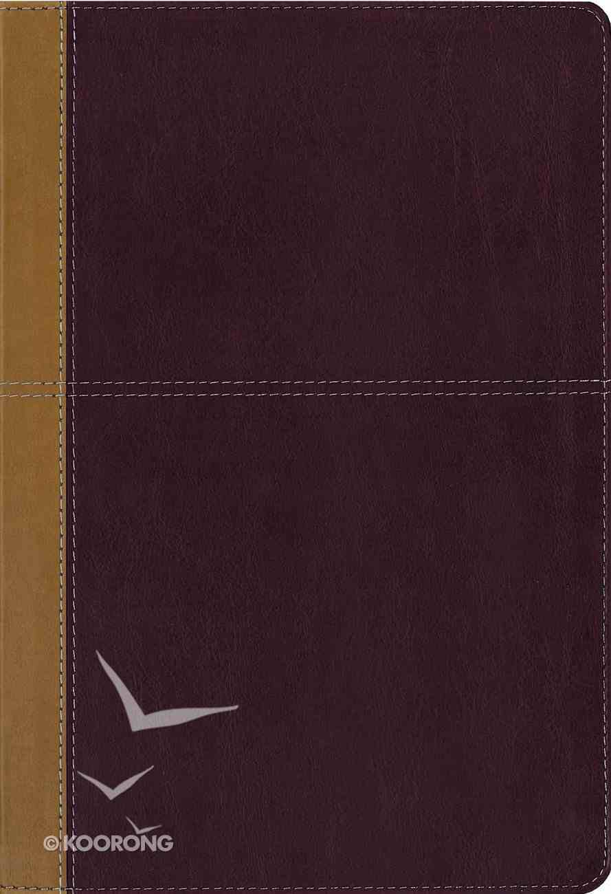 Kjv/Amp Side-By-Side Bible Large Print (Kjv Red Letter, Amp Black Letter) Premium Imitation Leather