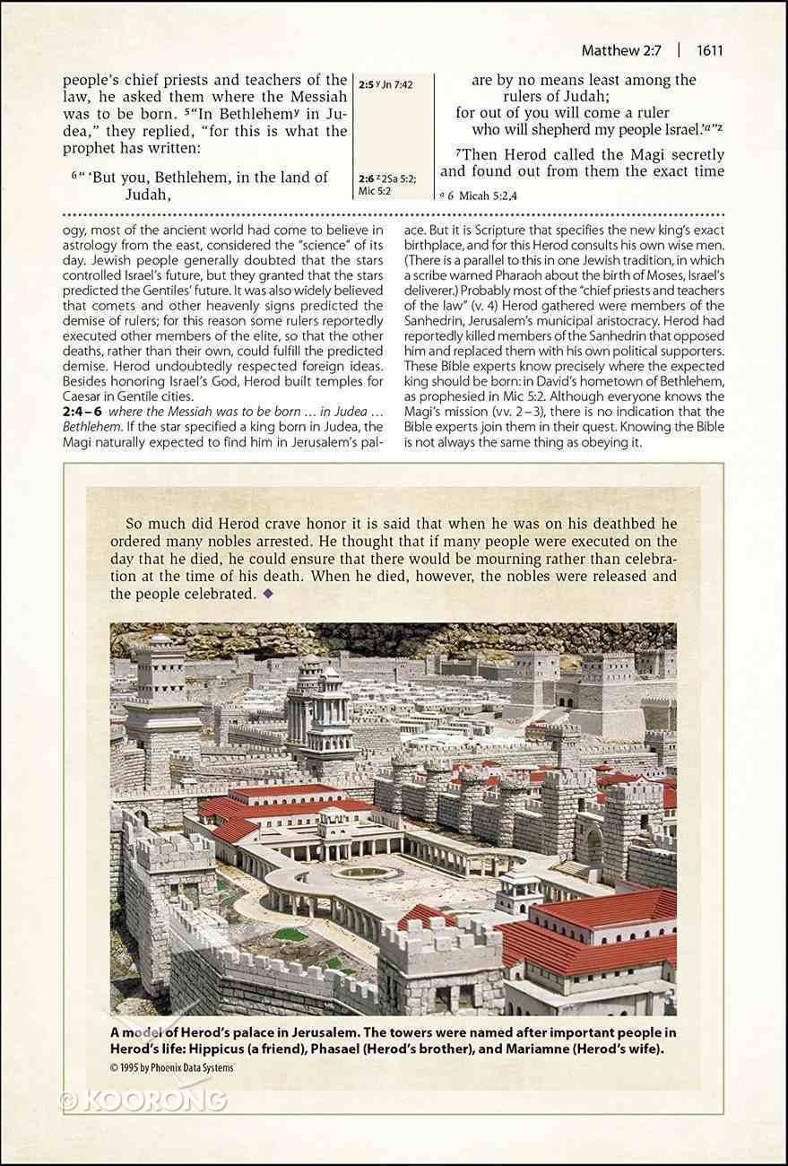 NIV Cultural Backgrounds Study Bible Large Print Red Letter Edition Hardback
