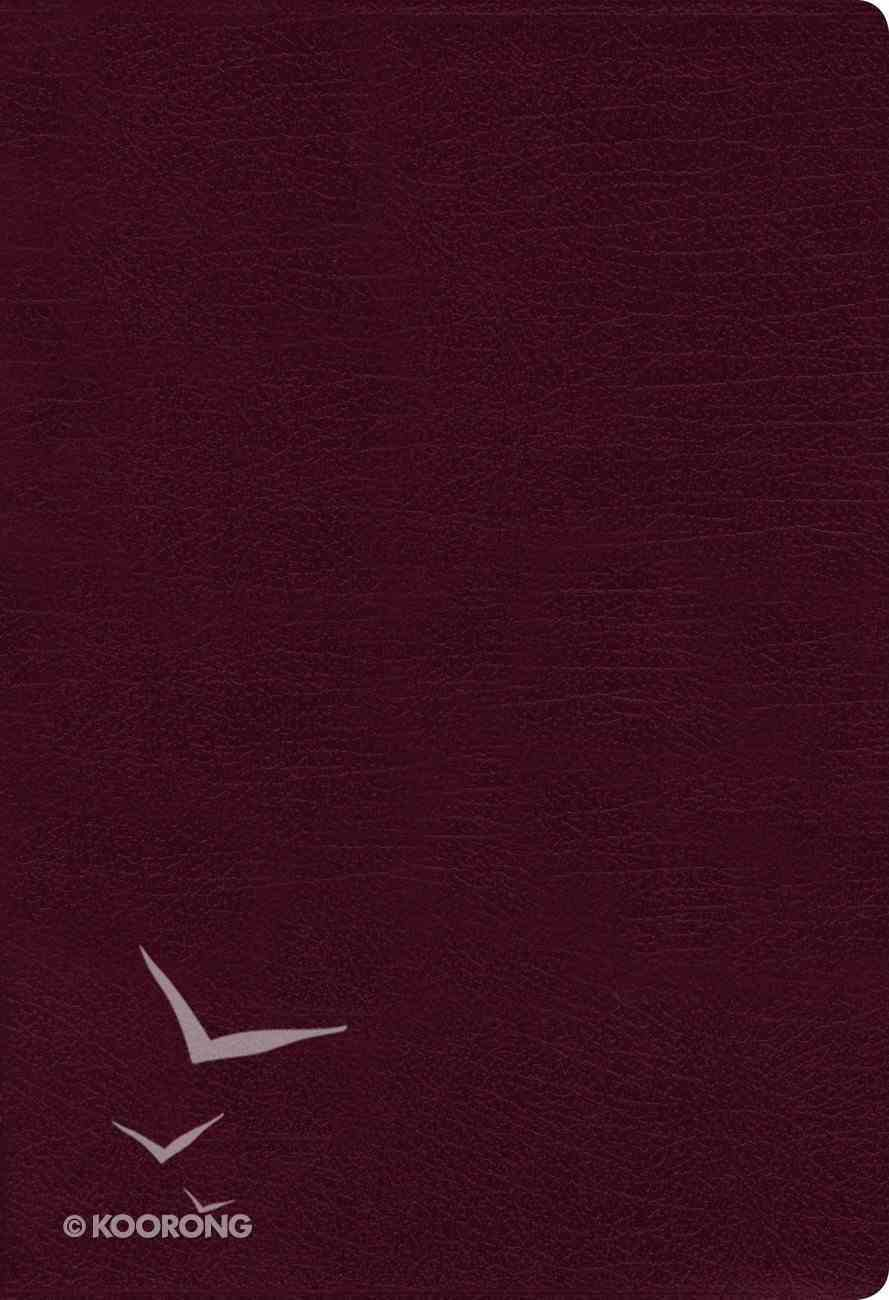 NIV Thinline Bible Large Print Burgundy Indexed (Red Letter Edition) Bonded Leather