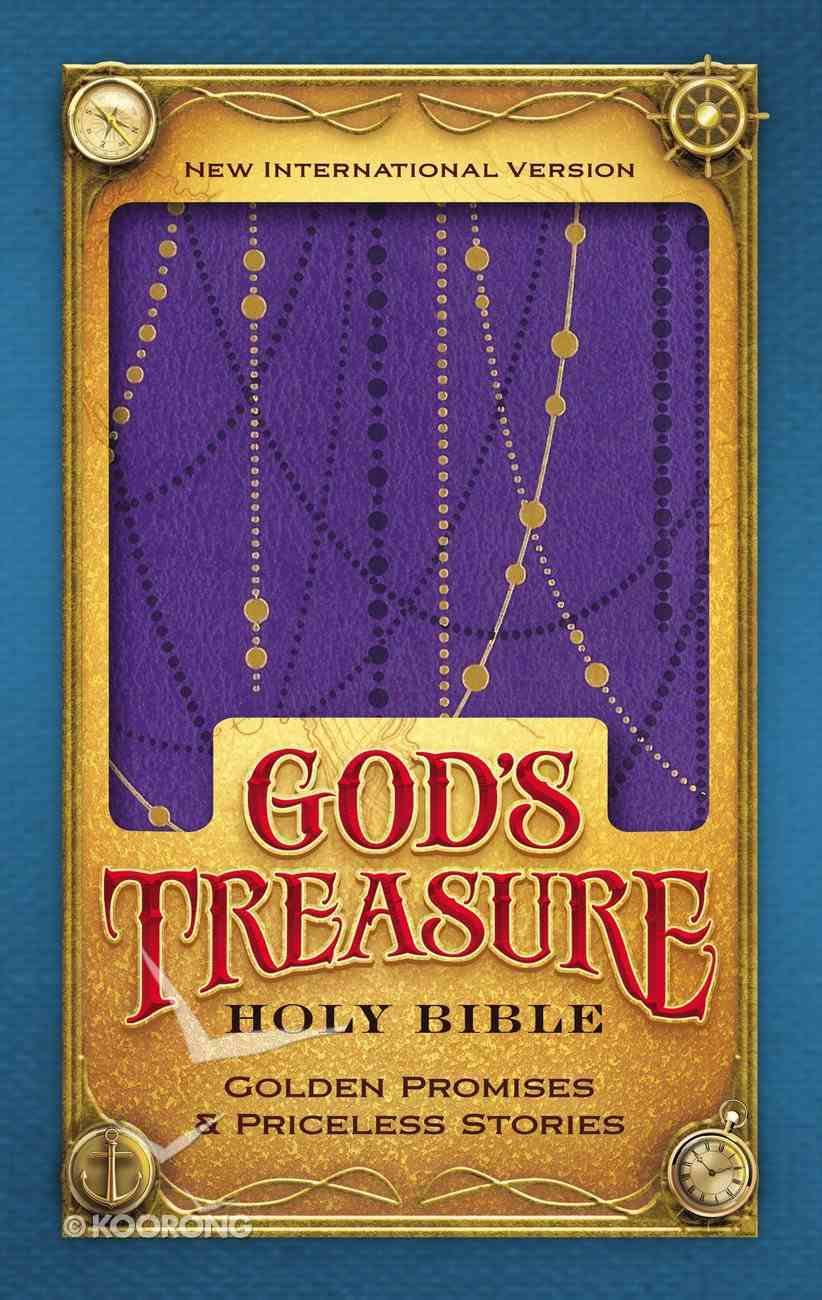 NIV God's Treasure Holy Bible Amethyst (Black Letter Edition) Premium Imitation Leather