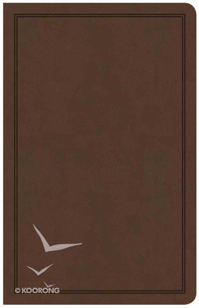 CSB Deluxe Gift Bible Brown (Red Letter Edition) Imitation Leather