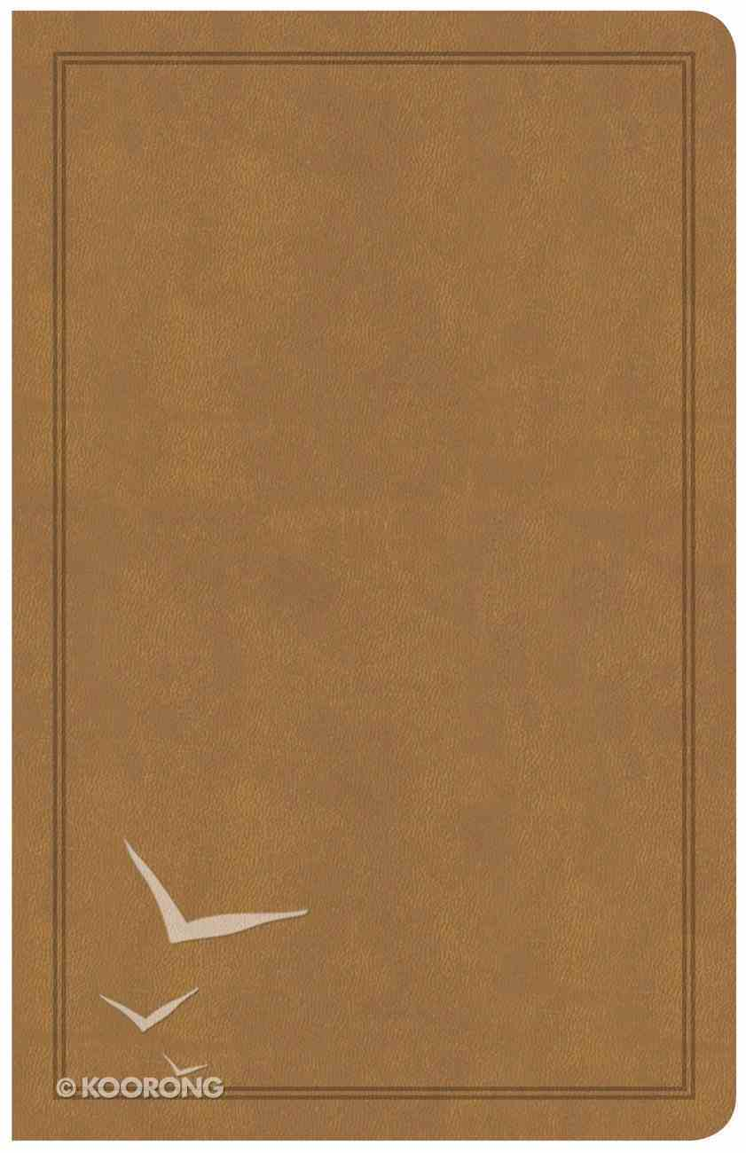 CSB Deluxe Gift Bible Tan (Red Letter Edition) Imitation Leather