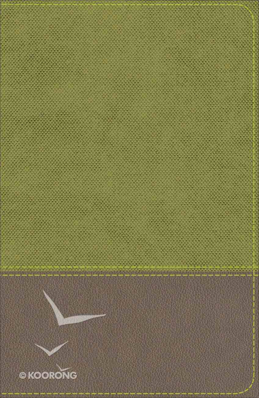 KJV Study Bible For Boys Olive/Brown (Red Letter Edition) Imitation Leather