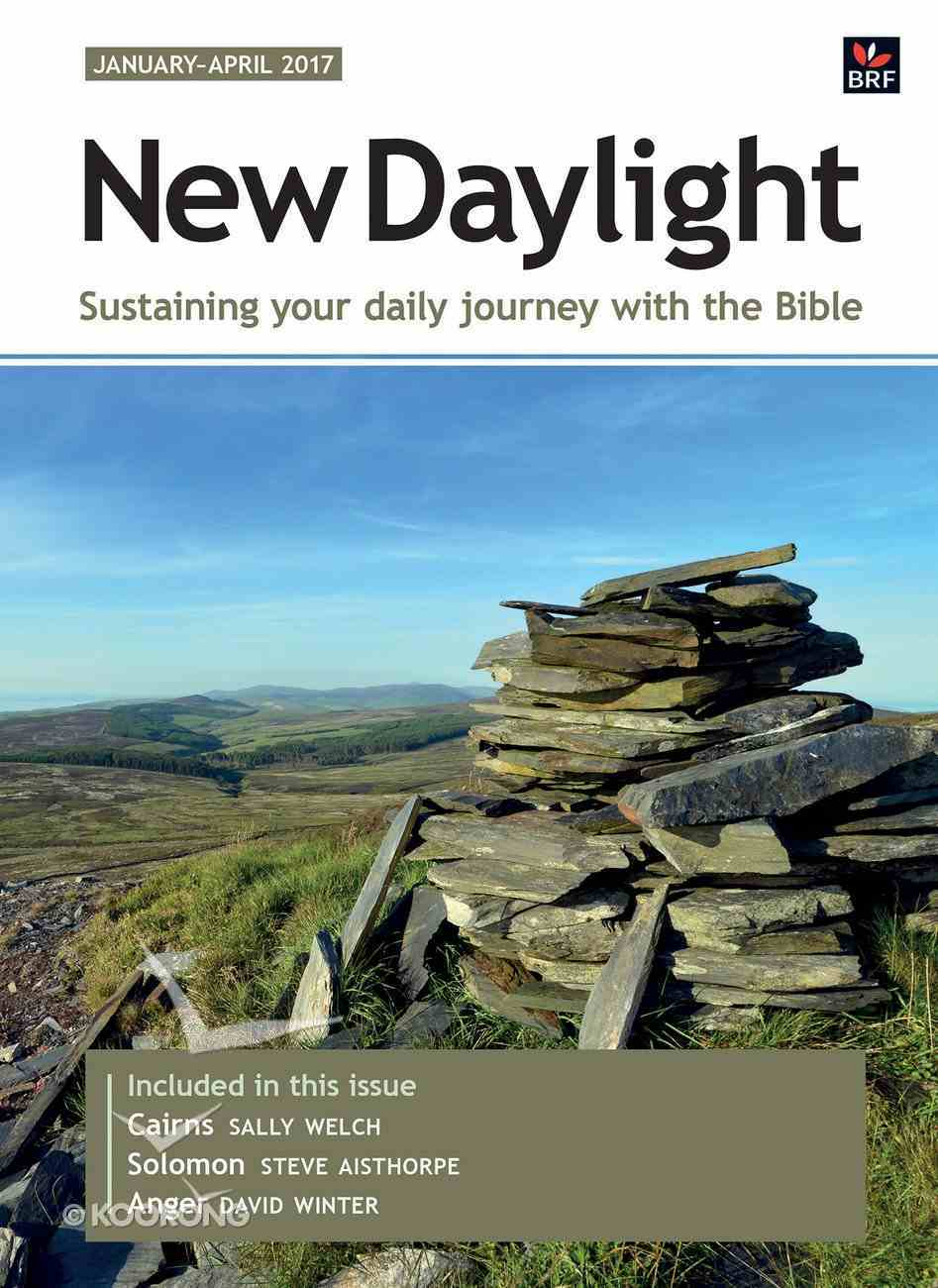 New Daylight Deluxe 2017 #01: Jan-Apr (Large Print) Paperback