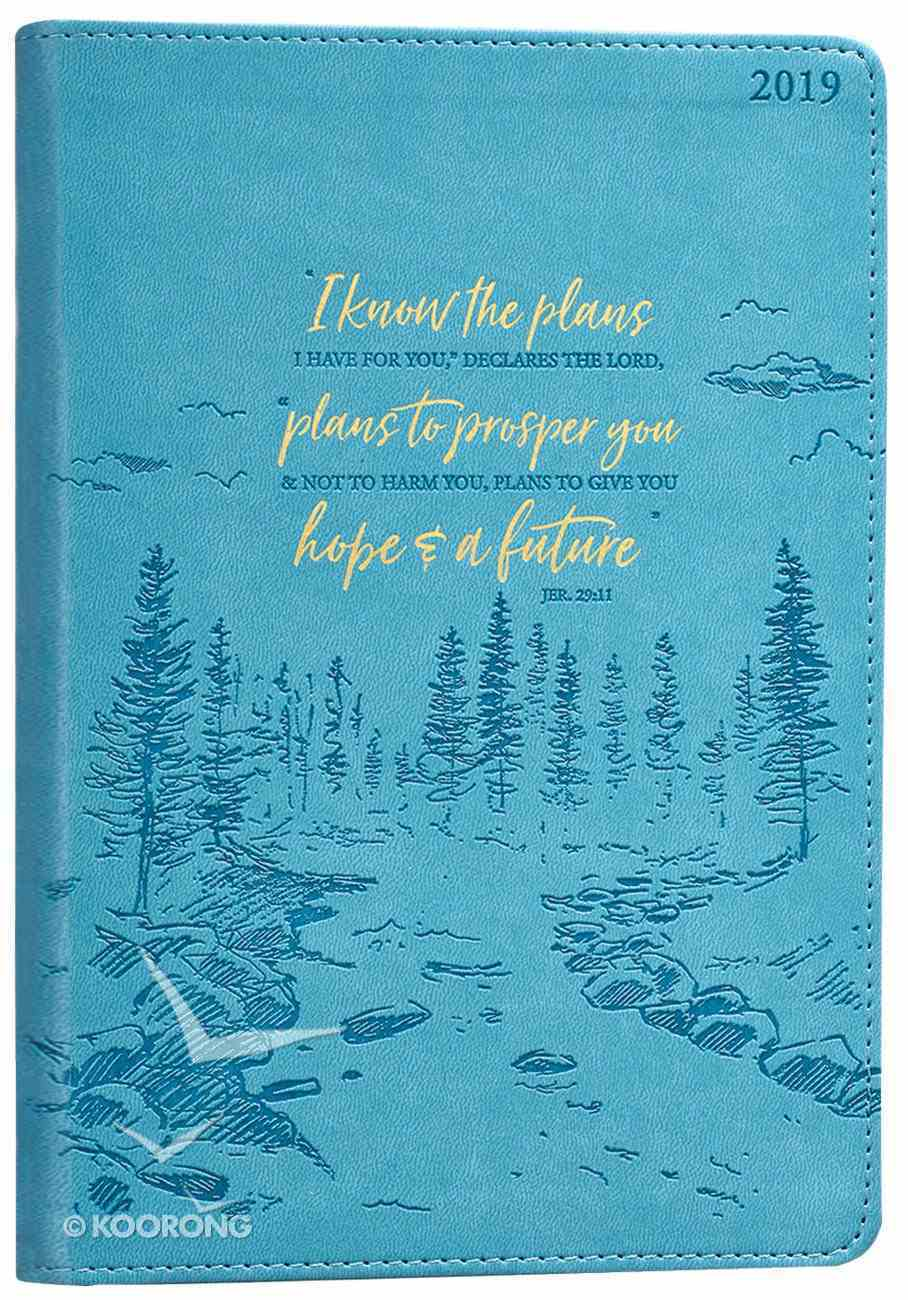 2019 Executive 12-Month Diary/Planner: I Know the Plans, Teal Imitation Leather