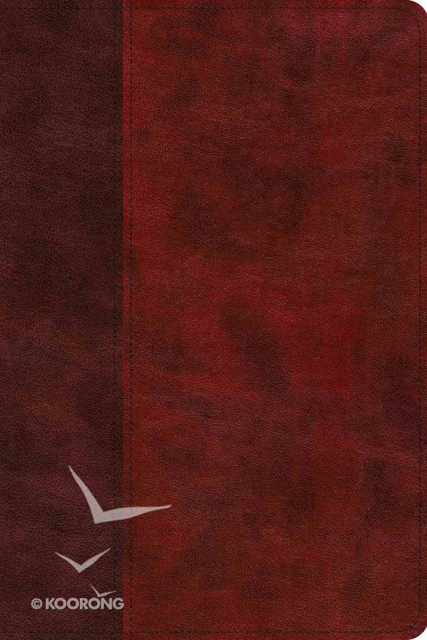 ESV Story of Redemption Bible: A Journey Through the Unfolding Promises of God Burgundy/Red (Black Letter Edition) Imitation Leather