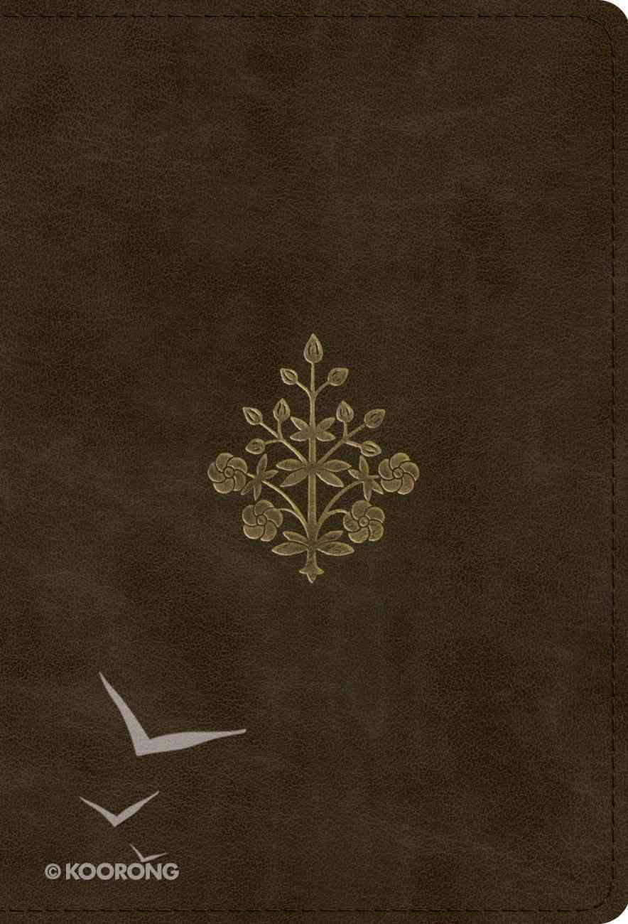 ESV Large Print Compact Bible Olive Branch Design (Red Letter Edition) Imitation Leather
