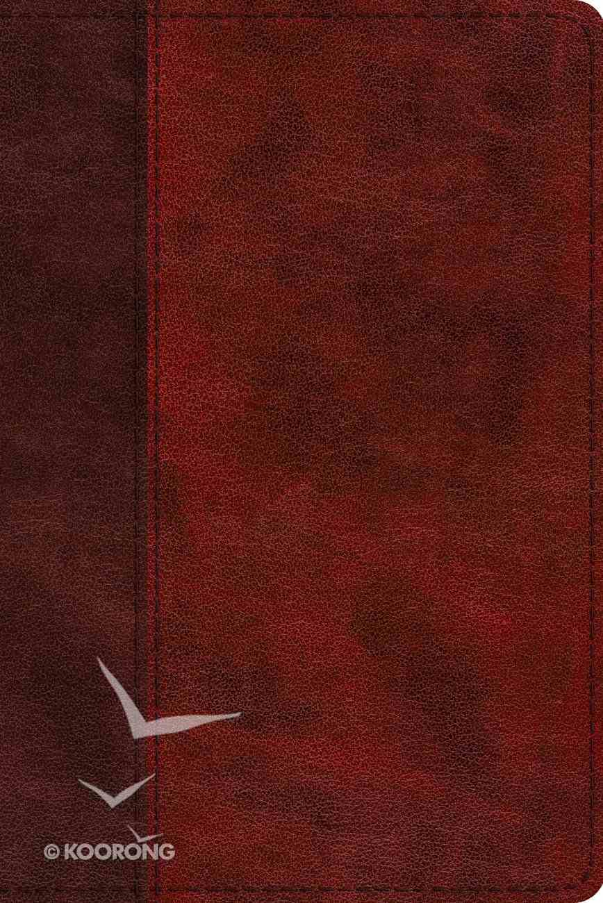 ESV Study Bible Personal Size Burgundy/Red Timeless Design (Black Letter Edition) Imitation Leather