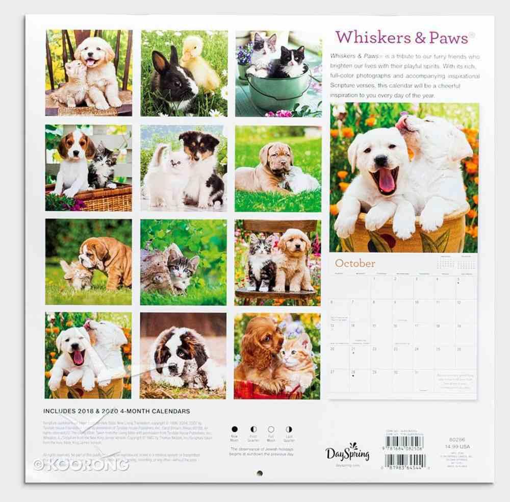 2019 Wall Calendar: Whiskers & Paws Calendar