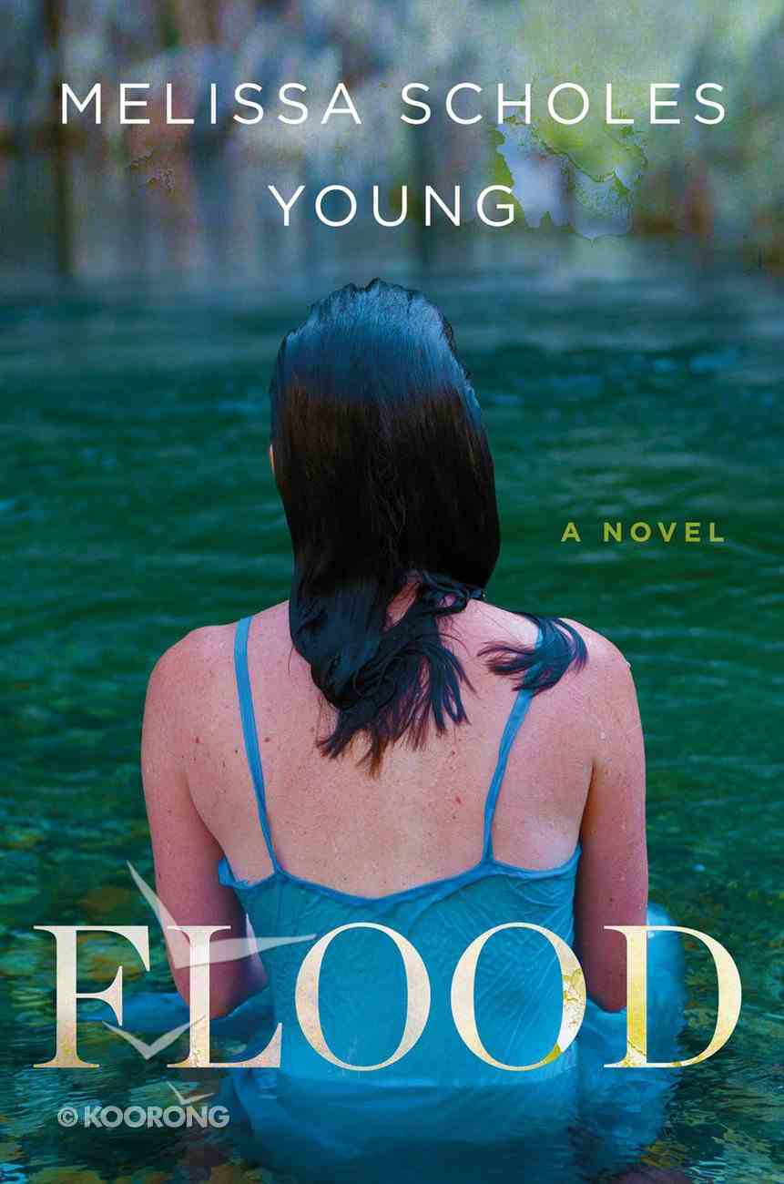 Flood eBook