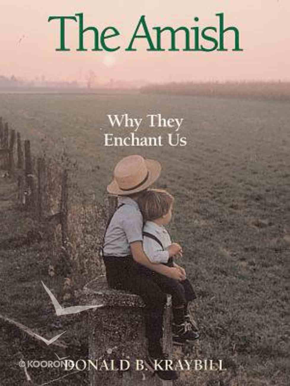 Amish: Why They Enchant Us Hardback