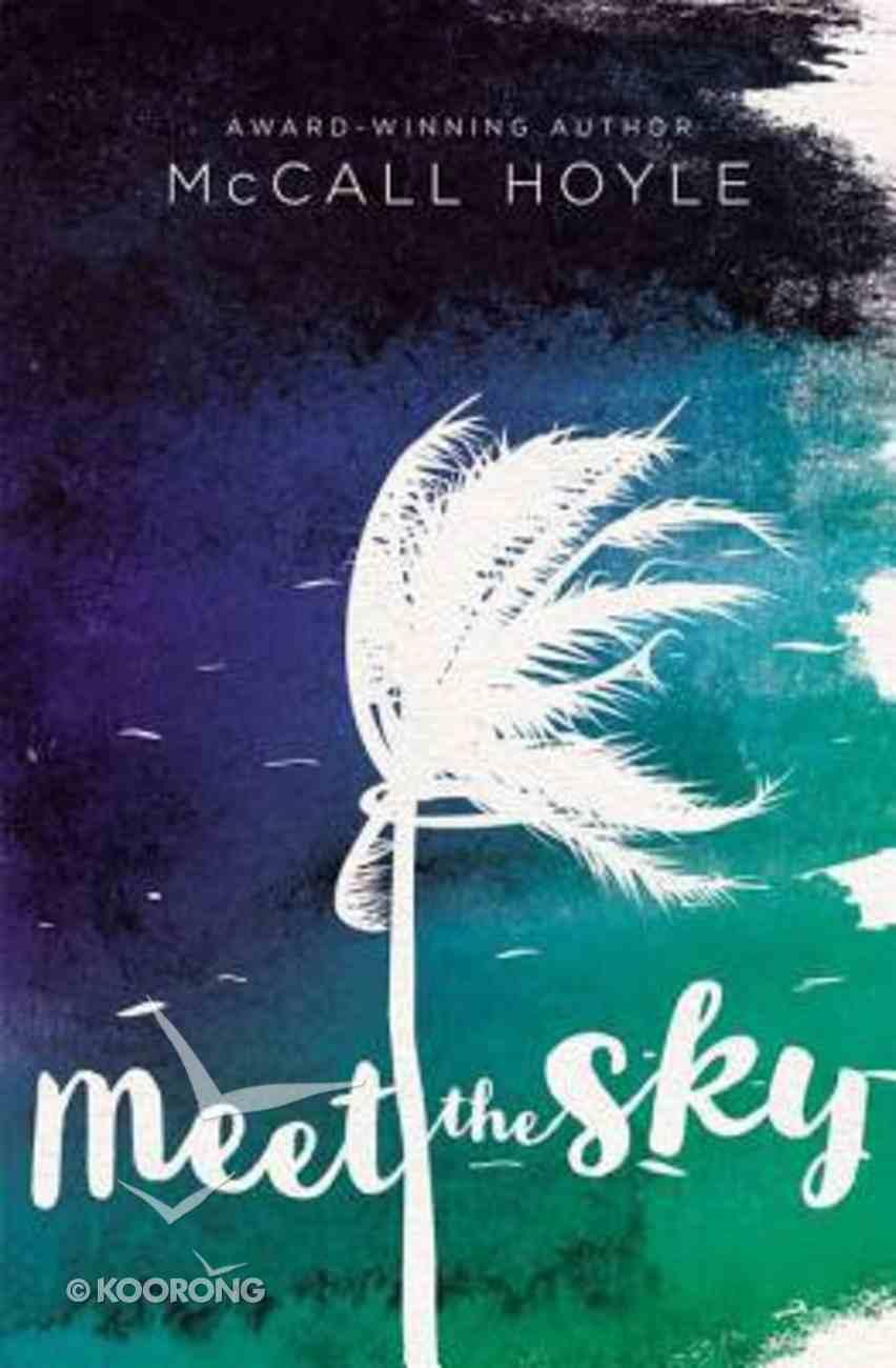 Meet the Sky eBook