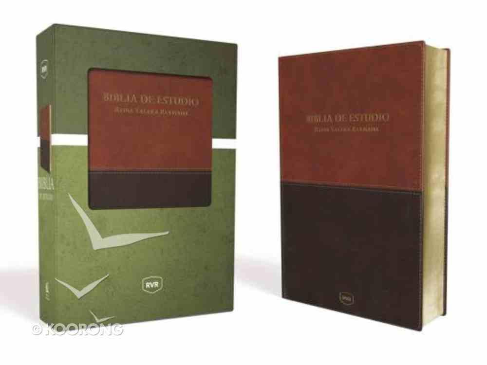 Rvr Santa Biblia De Estudio Reina Valera Revisada Cafe Contemporneo Imitation Leather