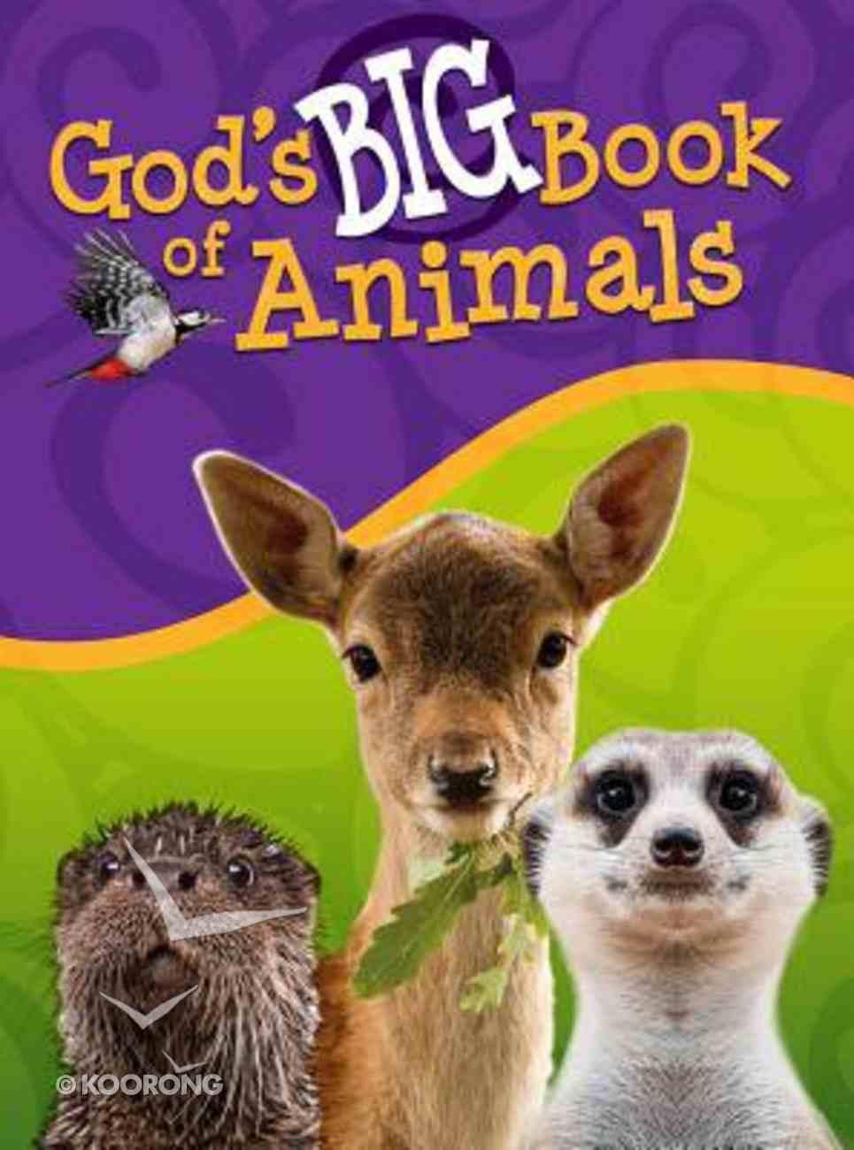 God's Big Book of Animals Hardback
