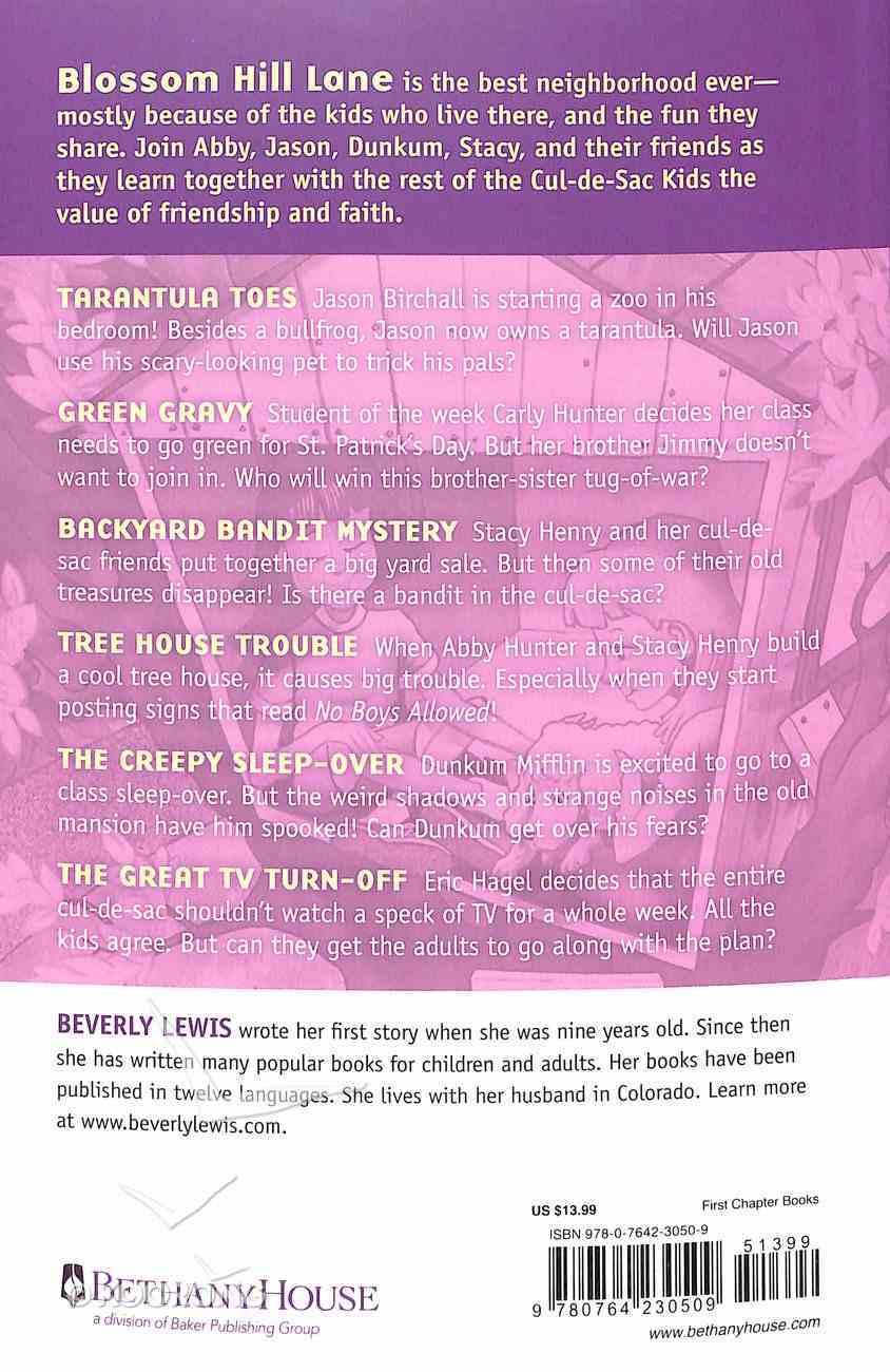 Cul-De-Sac Kids Collection #03 (Books 13-18) (Cul-de-sac Kids Series) Paperback