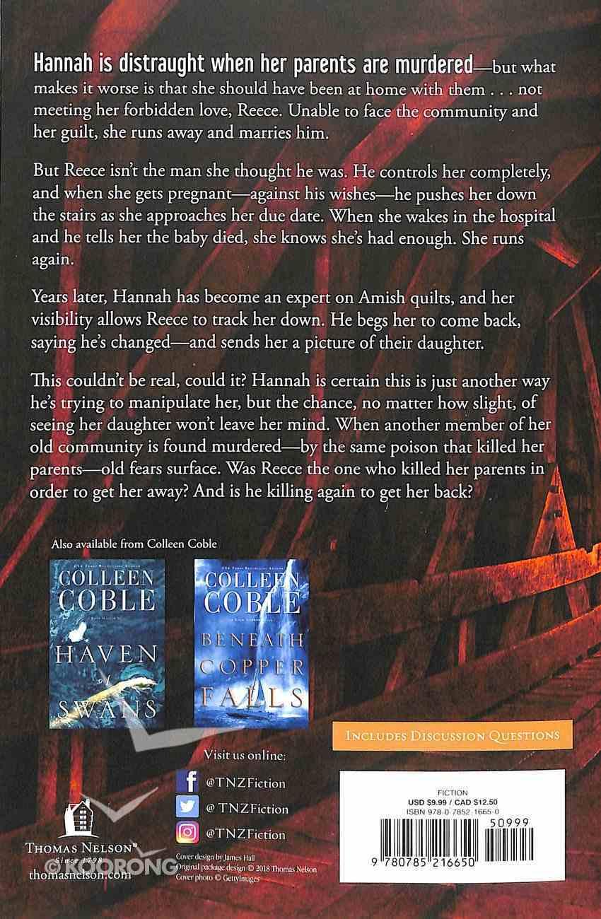Where Shadows Meet: A Romantic Suspense Novel Paperback