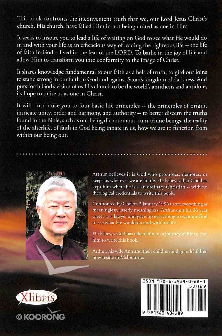 The World's Antithesis and Antidote Its Hope: God's Vision For Us, His Church Paperback