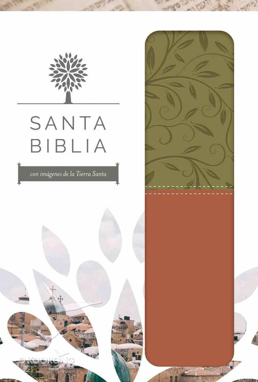 Rvr 1960 Santa Biblia Letra Grande Verde Y Marron Con Caja De Regalo (Red Letter Edition) (The Holy Bible Rvr 1960 - Large Print) Paperback
