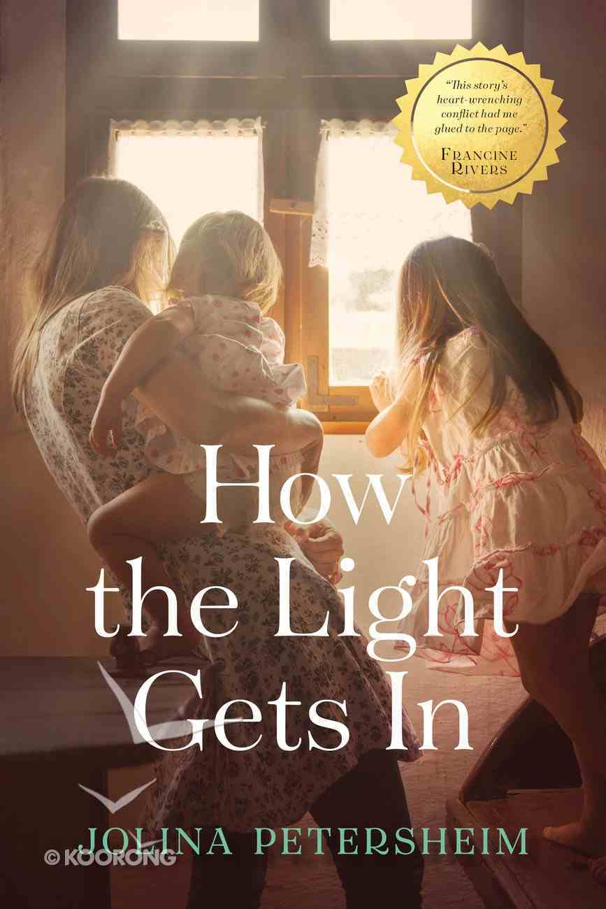 How the Light Gets in Hardback