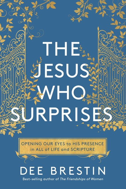 Product: Jesus Who Surprises, The Image