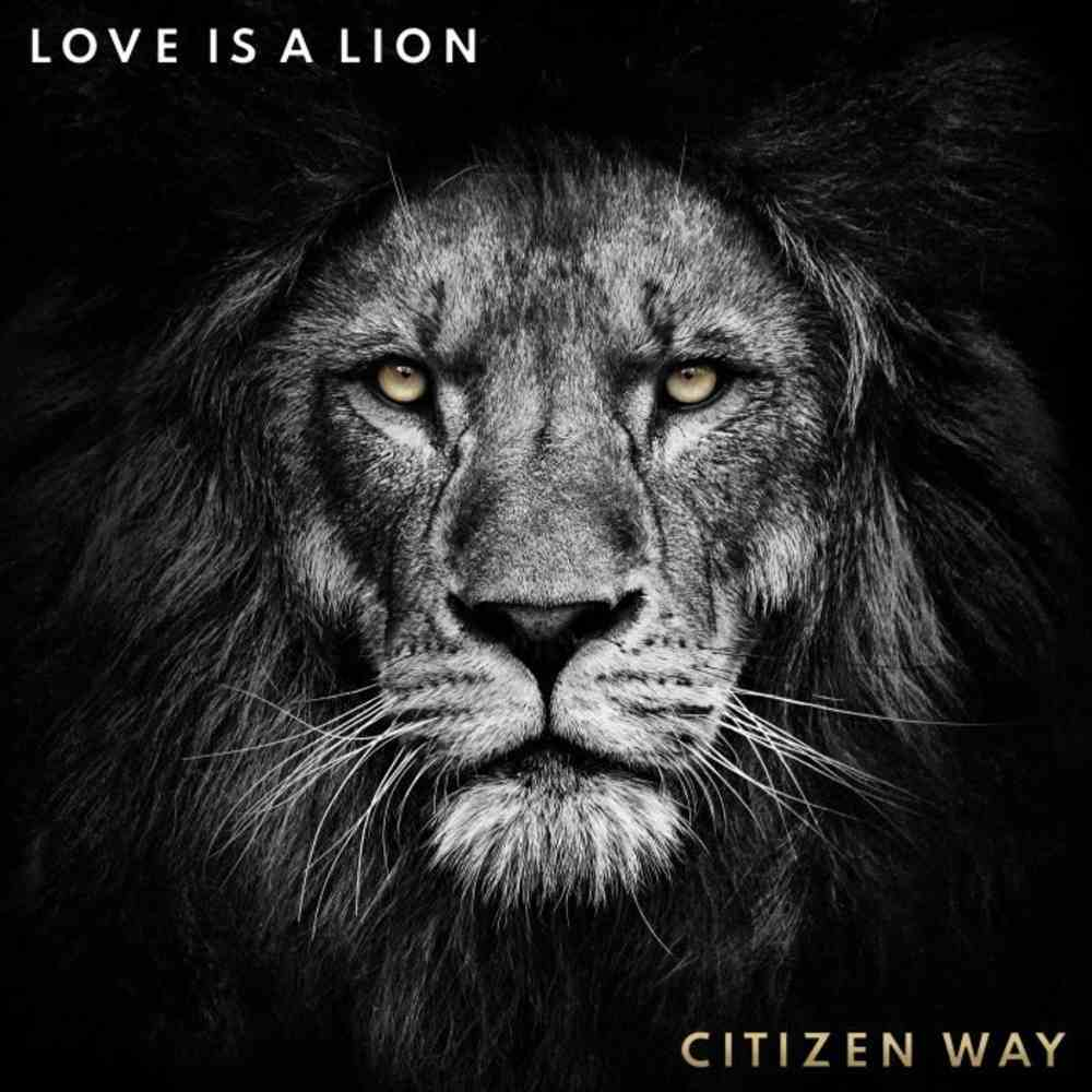 Love is a Lion CD