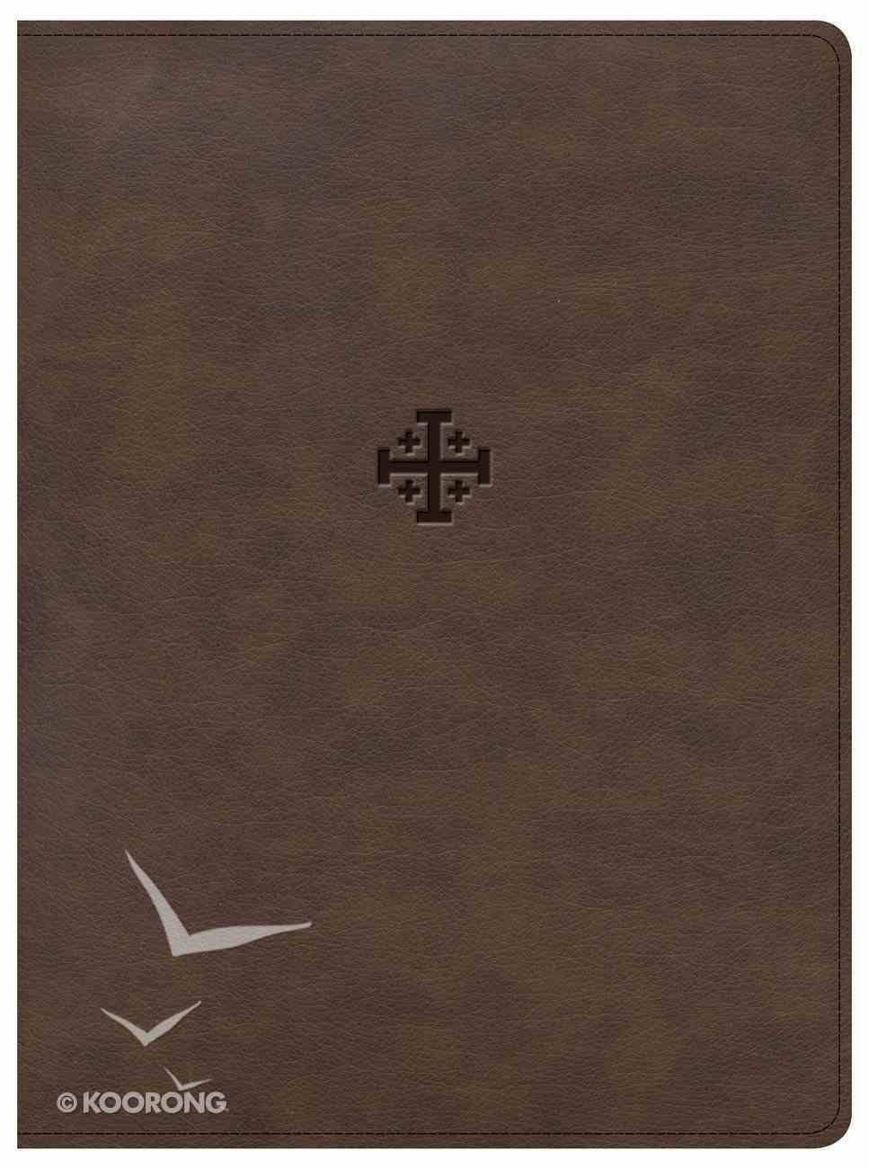 CSB Life Connections Study Bible Brown Indexed (Black Letter Edition) Imitation Leather