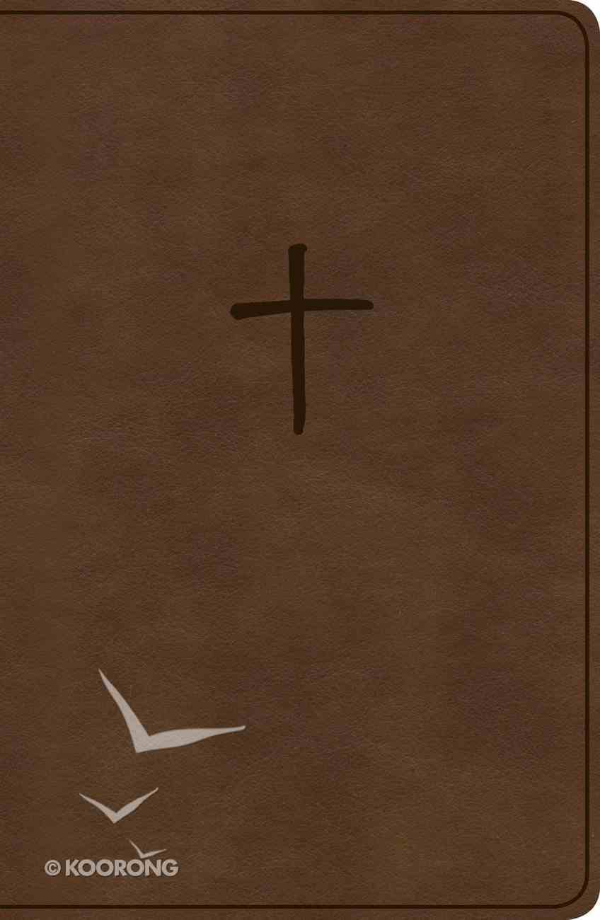 KJV Compact Bible Brown Value Edition (Red Letter Edition) Imitation Leather