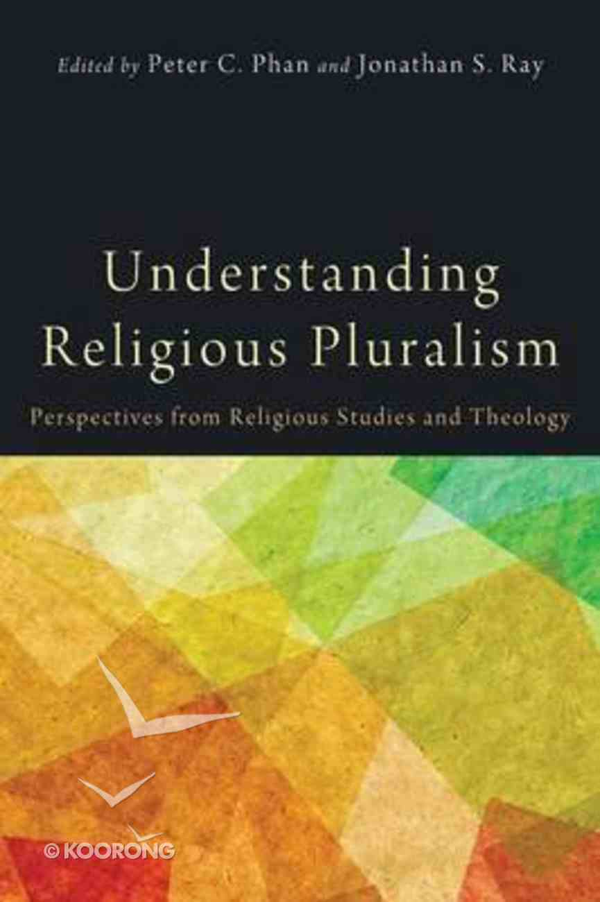 Understanding Religious Pluralism: Perspectives From Religious Studies and Theology Paperback
