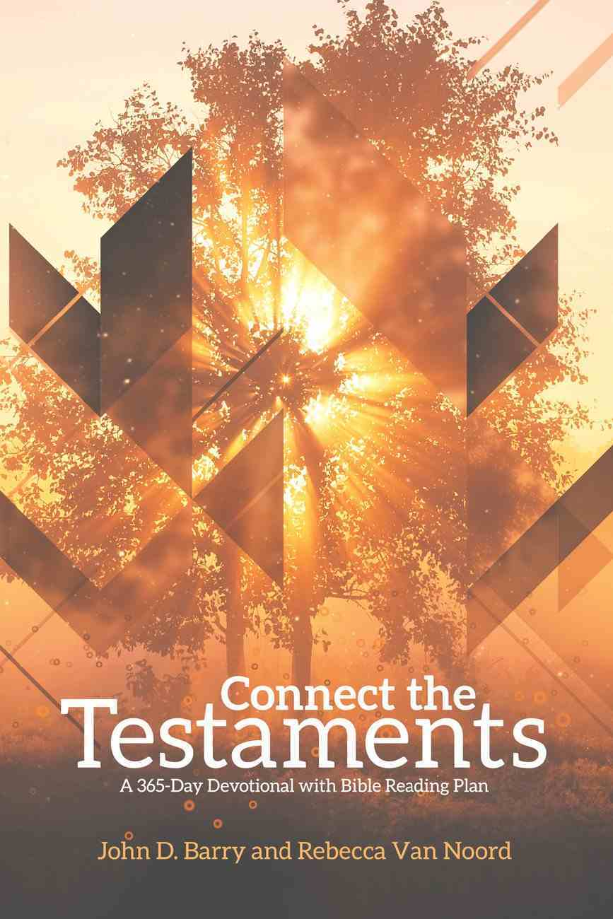 Connect the Testaments Paperback