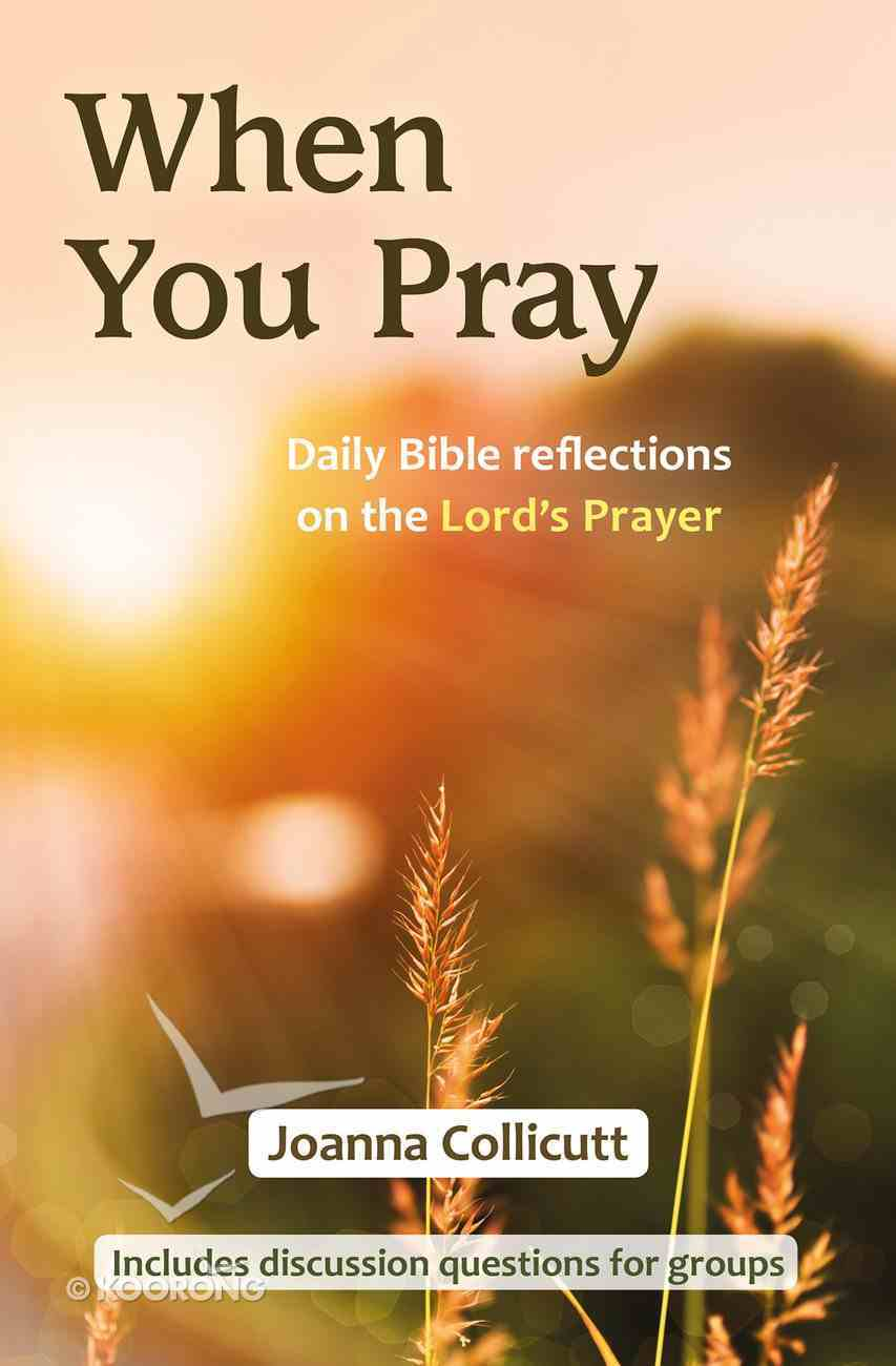 When You Pray: Daily Bible Reflections on the Lord's Prayer PB (Smaller)