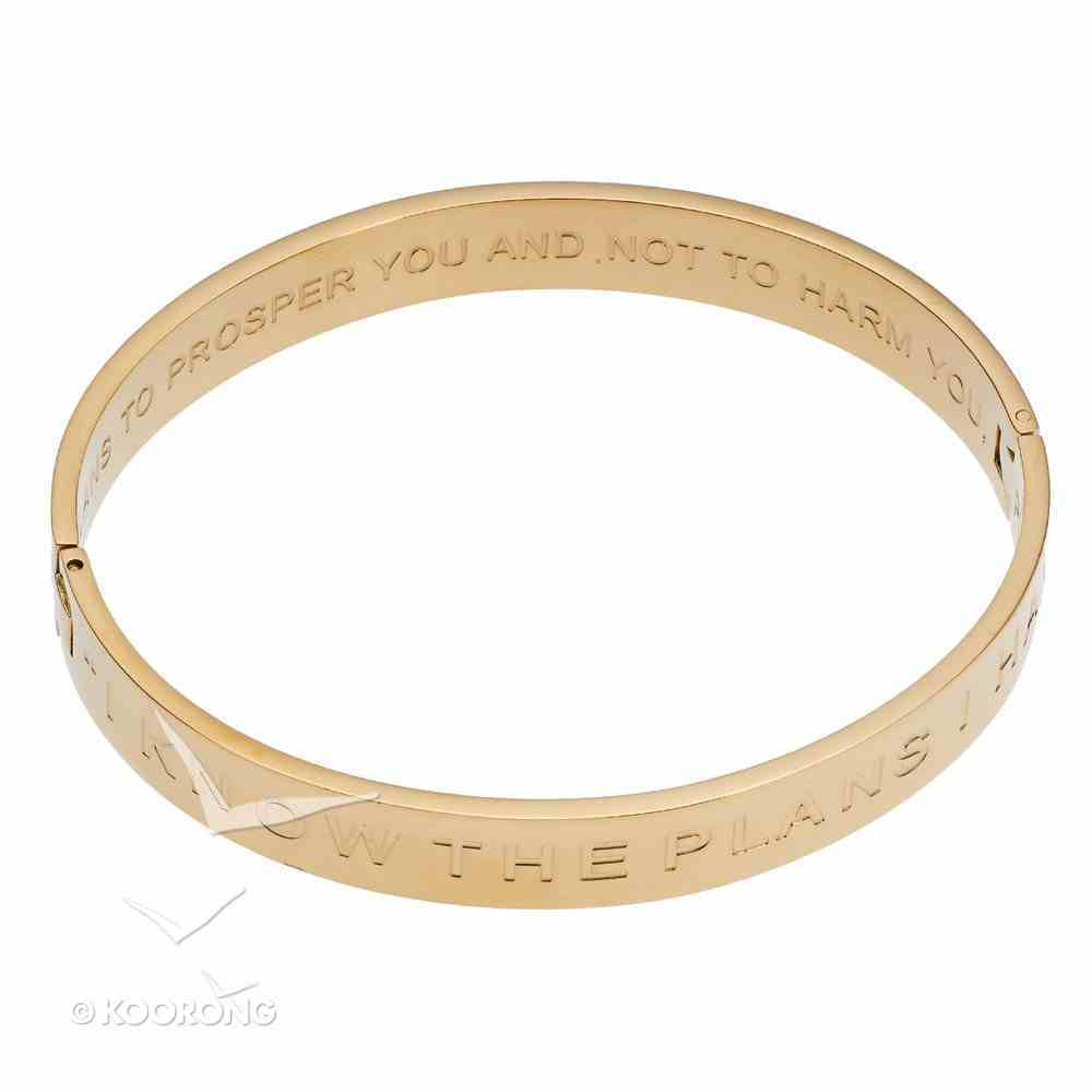 Bracelet: I Know the Plans Hinged Bangle, Snap Closure, 316 Stainless Steel With 14K Gold Plating Jewellery