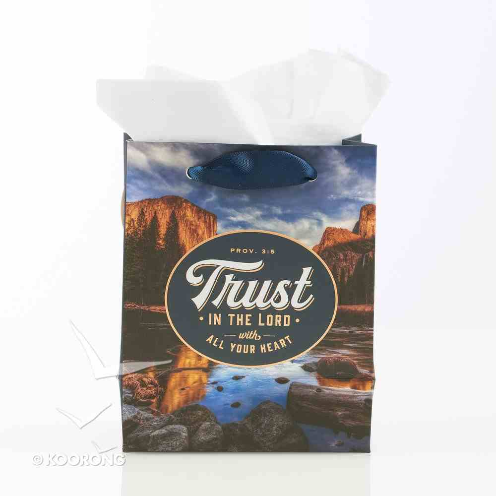 Gift Bag Small: Trust in the Lord With All Your Heart (Proverbs 3:5) Stationery
