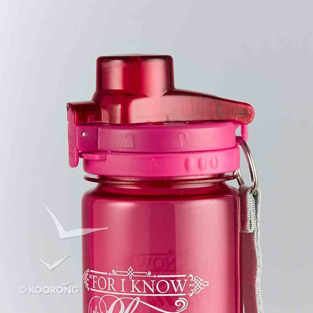 Plastic 700ml Water Bottle: I Know the Plans (Bright Pink) Homeware