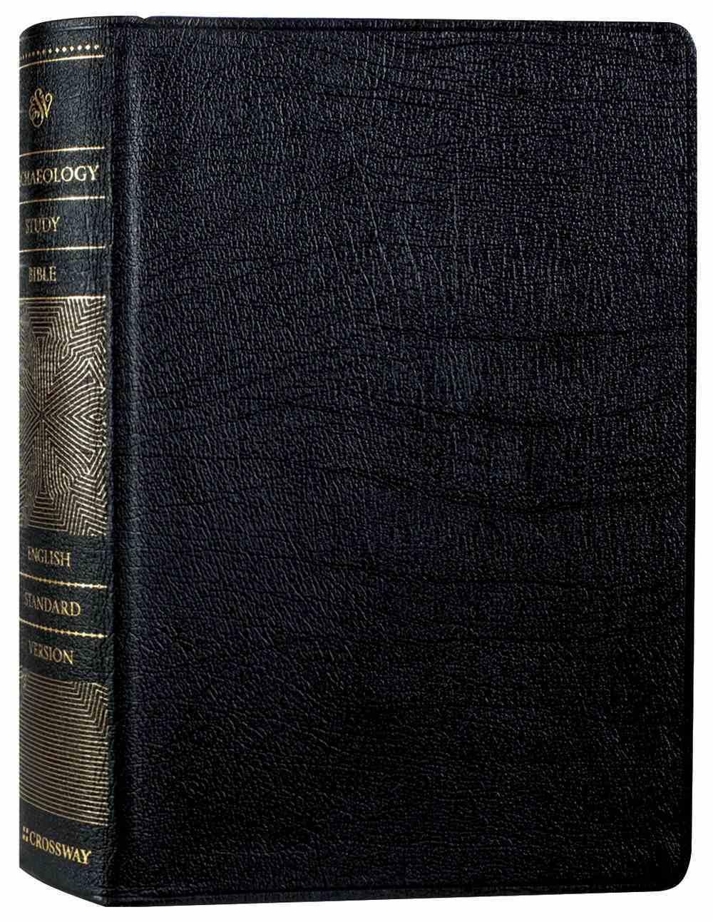 ESV Archaeology Study Bible Black (Black Letter Edition) Genuine Leather