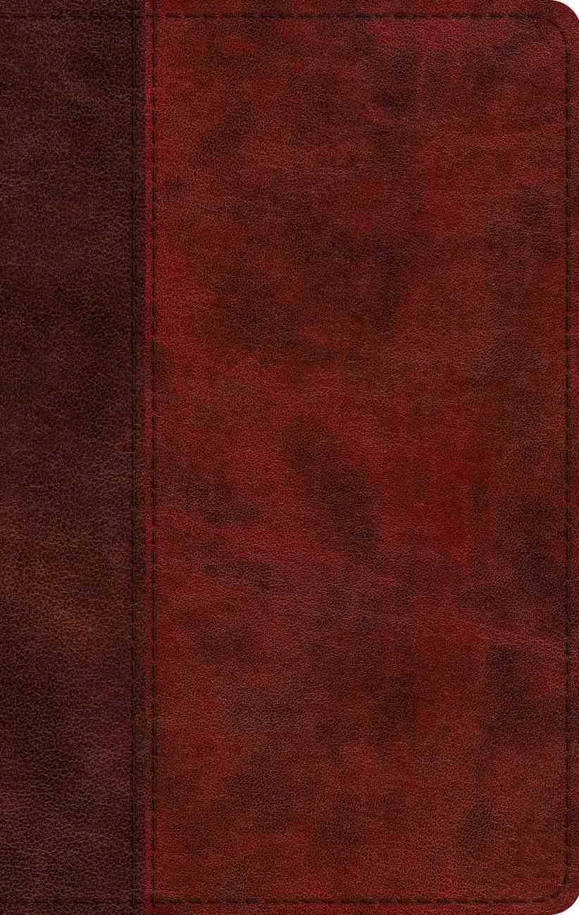 ESV Large Print Thinline Bible Burgundy/Red Timeless Design (Black Letter Edition) Imitation Leather