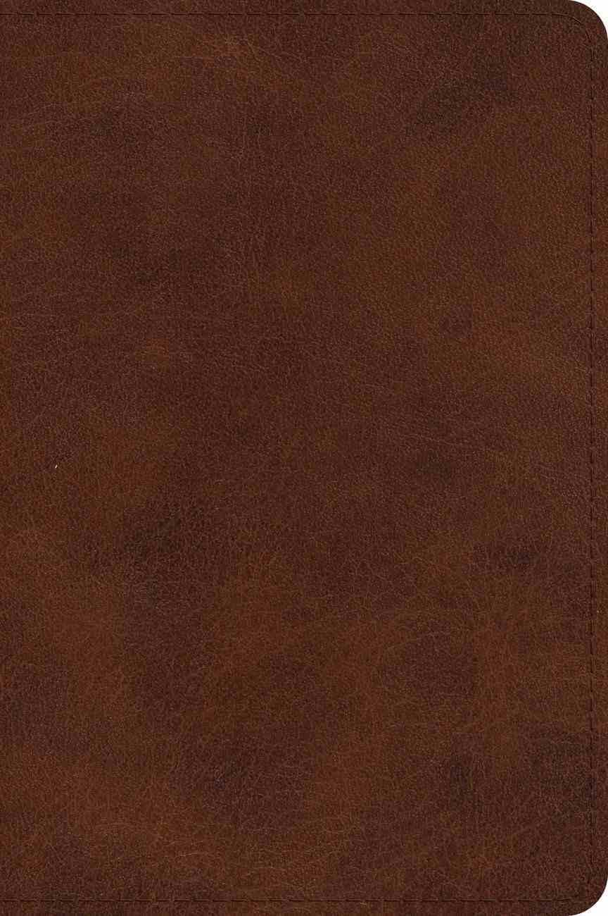 ESV Large Print Bible Deep Brown (Black Letter Edition) Imitation Leather