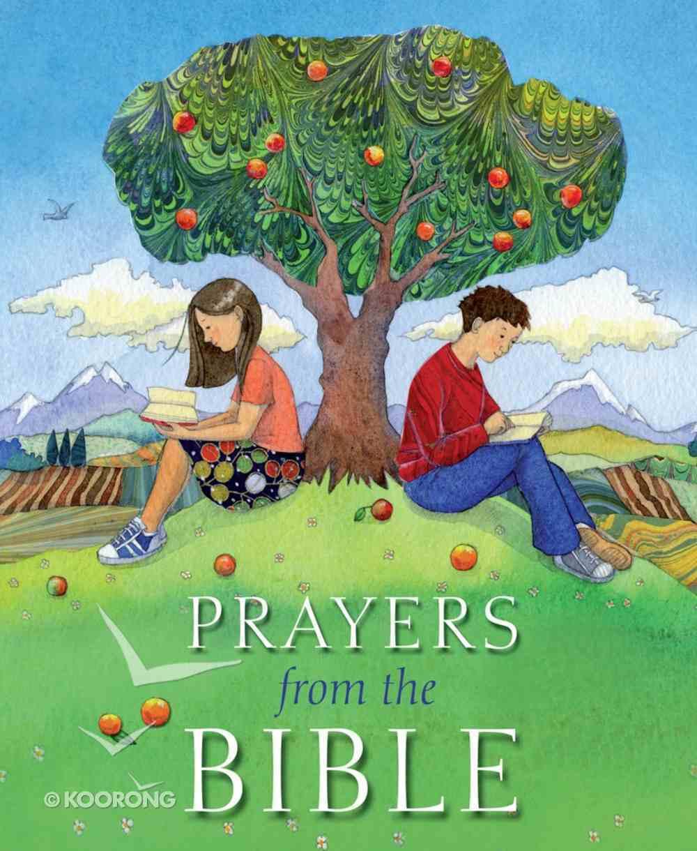 Prayers From the Bible Hardback
