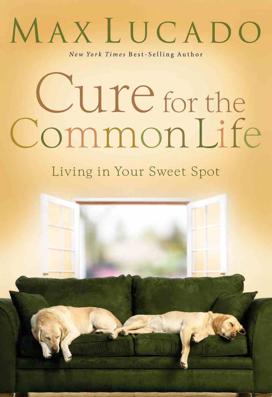 Cure For the Common Life (Abridged, Mp3) CD