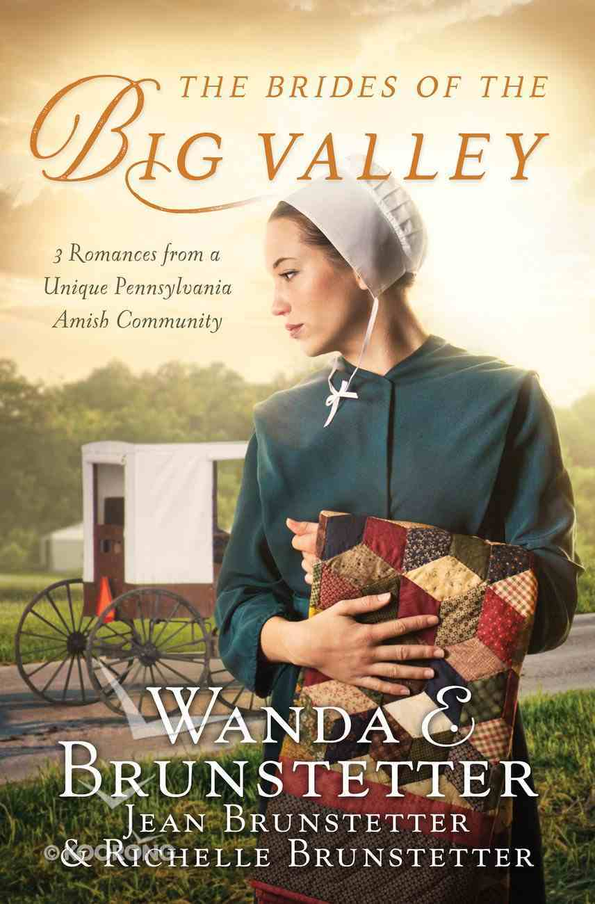 The Brides of the Big Valley eBook