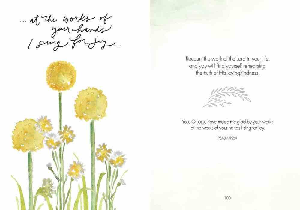 Fields of Joy Hardback