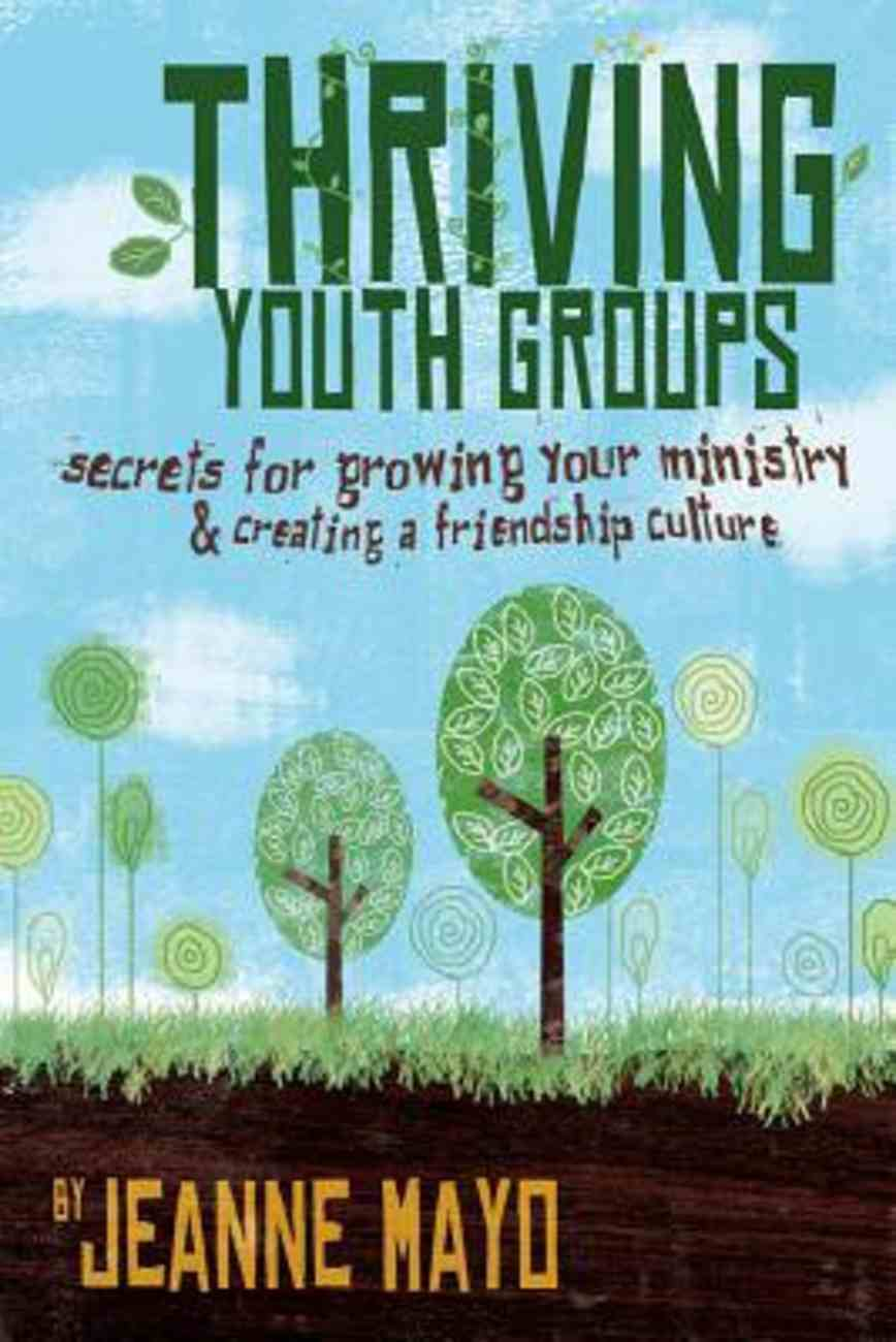 Thriving Youth Groups Paperback