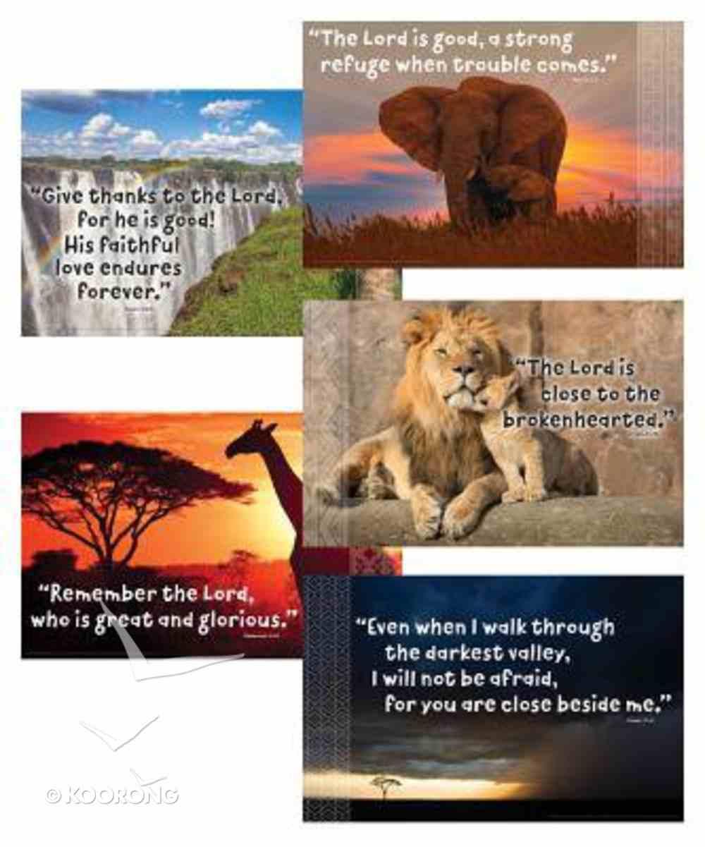 2019 Vbs Roar Bible Verse Posters (Set Of 5) Pack