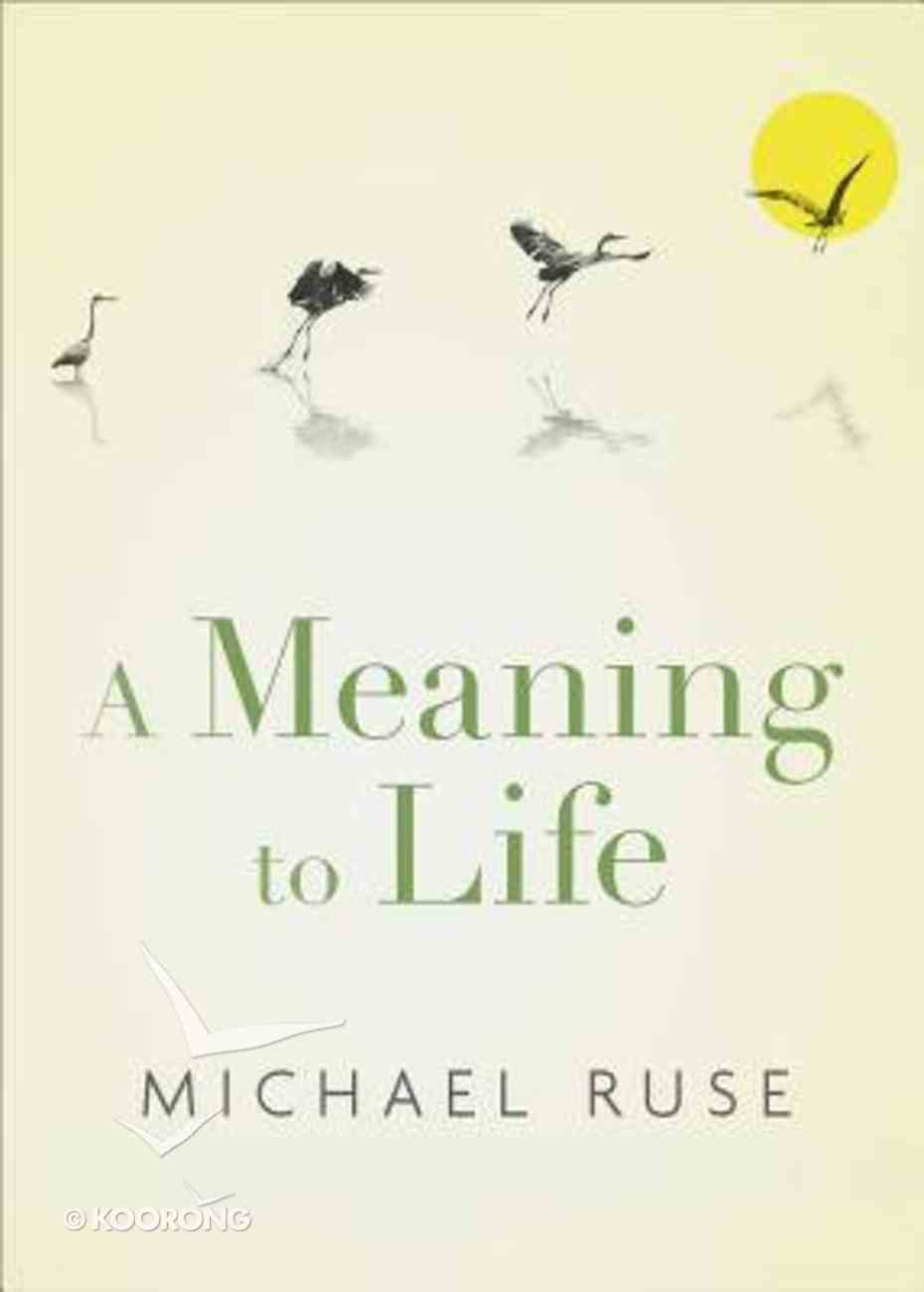 A Meaning to Life Hardback