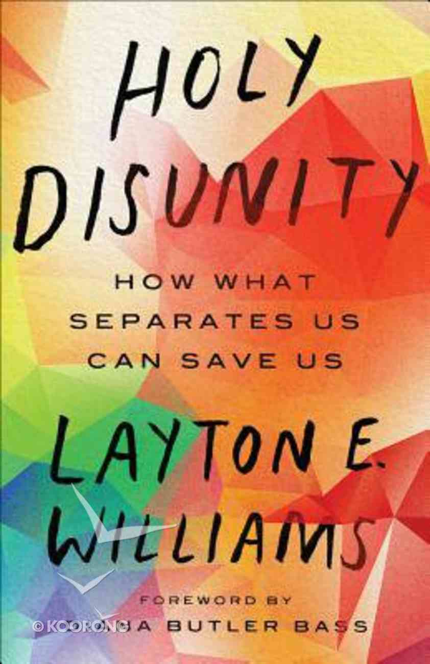 Holy Disunity: How What Separates Us Can Save Us Paperback